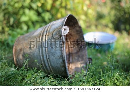Zink emmer home retro schoonmaken patroon Stockfoto © Hofmeester