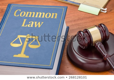 A law book with a gavel - Common law Stock photo © Zerbor