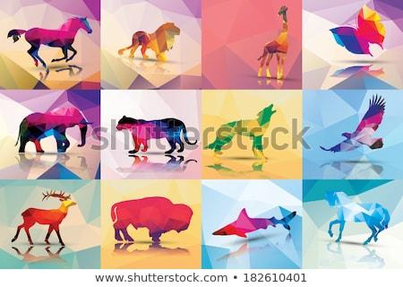 Luipaard origami illustratie Stockfoto © penivajz