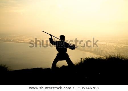 Japanese man with sword at sunset Stock photo © adrenalina