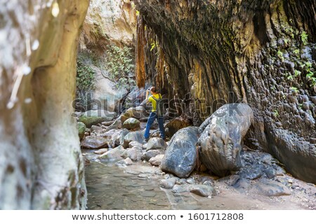 Avakas Gorge. Paphos District, Cyprus Stock photo © Kirill_M