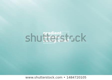 brushed metal template background eps 8 stock photo © beholdereye