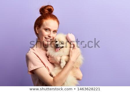 собака · щетка · изолированный · белый · красоту · массаж - Сток-фото © cynoclub