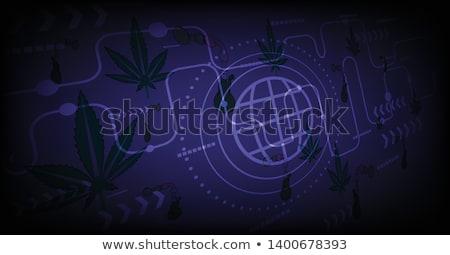 Marihuana hennep blad silhouet ontwerp medische Stockfoto © Zuzuan