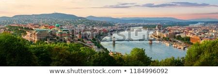 Panorama Boedapest Hongarije breed hongaars parlement Stockfoto © Kayco