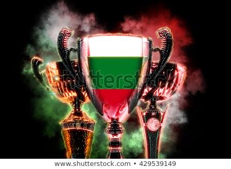 Trofeo Cup bandiera Bulgaria illustrazione digitale Foto d'archivio © Kirill_M