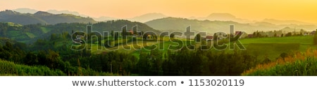 rural landscape serbia stock photo © simply