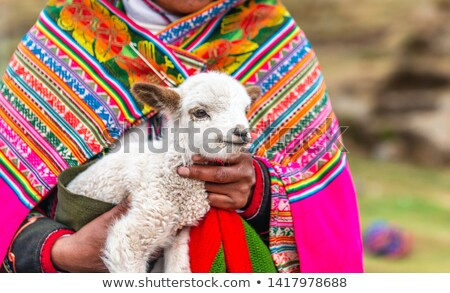 peruvian woman with alpaca stock photo © adrenalina