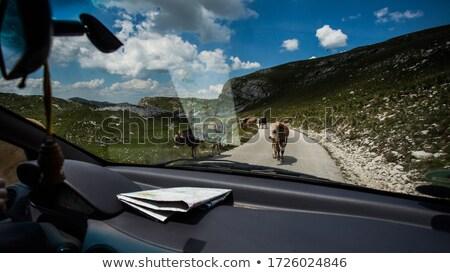 Trio Montenegro ver cidade igreja senhora Foto stock © joyr