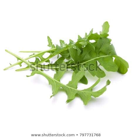 fresh rocket salad Stock photo © Digifoodstock