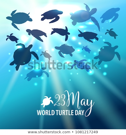Mondo tartaruga giorno calendario biglietto d'auguri vacanze Foto d'archivio © Olena