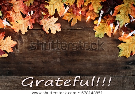 fall leaves lights and grateful text over wooden background stock photo © stephaniefrey