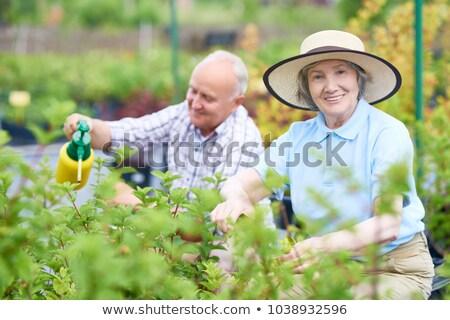 Hombre mujer jardinería invernadero naturaleza agricultura Foto stock © IS2