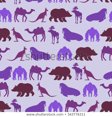 Zoo seamless Patten. Color background of wild beasts. Texture of Stock photo © popaukropa