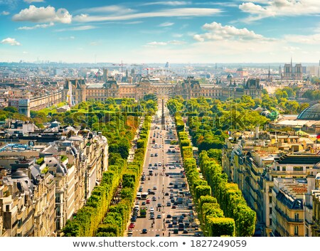 Champs Elysees from above Stock photo © Givaga