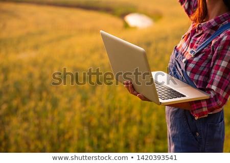 Stockfoto: Female Farmer Using Tablet Computer In Wheat Crop Field