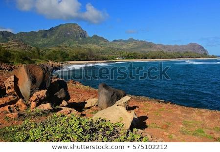 Rocky formations by sea on Kauai Stock photo © backyardproductions