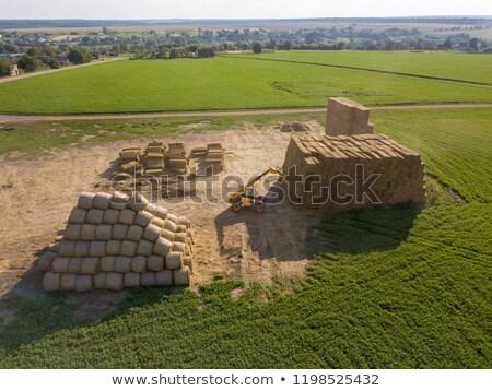 Grande campo agrícola maquinaria trator blue sky Foto stock © artjazz