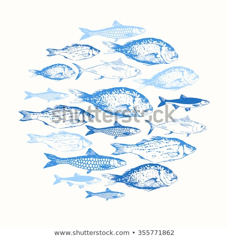 ryb · niebieski · wody · gradient · pęcherzyki · streszczenie - zdjęcia stock © robuart