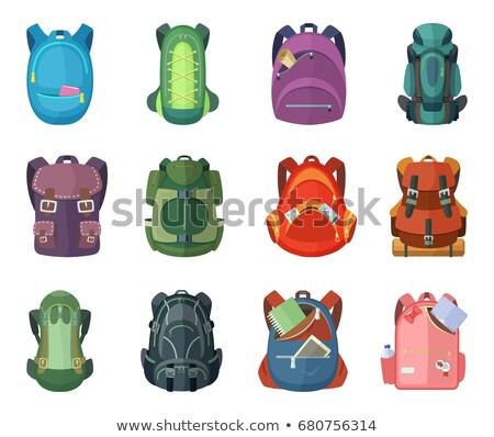 Back to School Schoolbag Set Vector Illustration Stock photo © robuart