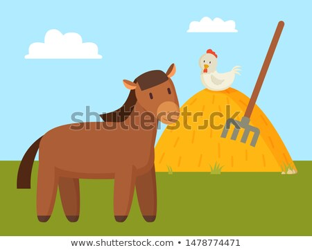 Brown Horse Grazing on Green Lawn Colorful Banner Stock photo © robuart