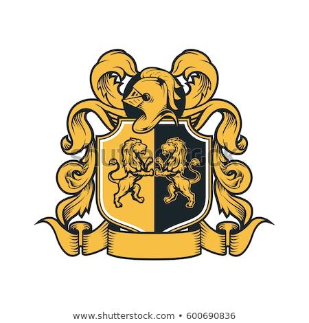 Jas armen kuif familie ridder schild Stockfoto © Krisdog