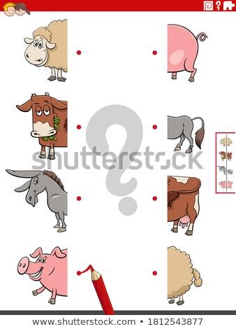 match halves of funny donkeys educational game Stock photo © izakowski