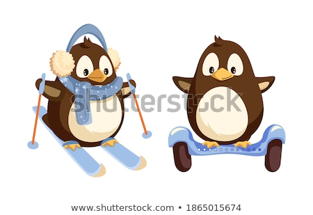 North Pole Cartoon Penguins in Warm Winter Cloth Stock photo © robuart