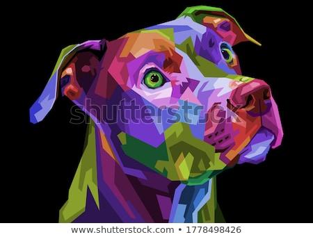 bull terrier dog cartoon character Stock photo © izakowski