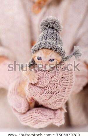 caliente · de · punto · guantes · blanco - foto stock © ilona75