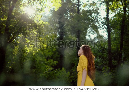 Redhead Young Woman Looking At Sun In Woods Stock photo © diego_cervo