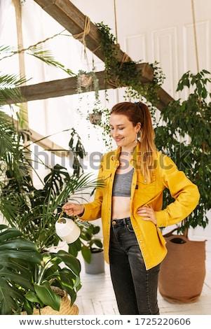 Young woman watering plants in her garden Stock photo © Elnur