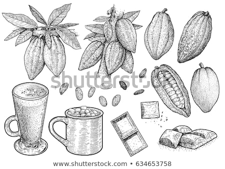 Vector sketch of Cocoa with marshmallows Stock photo © Sonya_illustrations