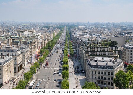View from the Arc de Triomphe towards the Louvre Stock photo © sarahdoow