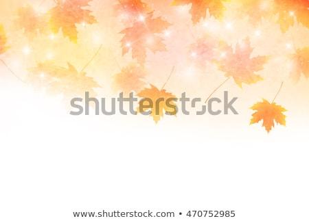 осень · аннотация · лист · Элементы · Nice · детали - Сток-фото © marinini