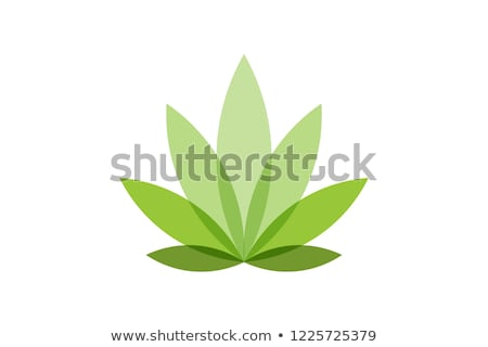 Cannabis Hemp Leaf Flat Icon Stock photo © -TAlex-