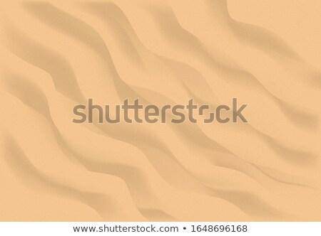 Arena de la playa superior vista vector playa Foto stock © Andrei_