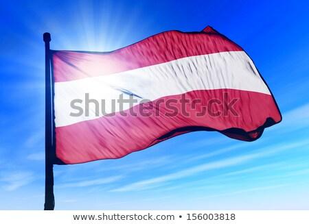Pintado Áustria bandeira vento república Foto stock © oxygen64