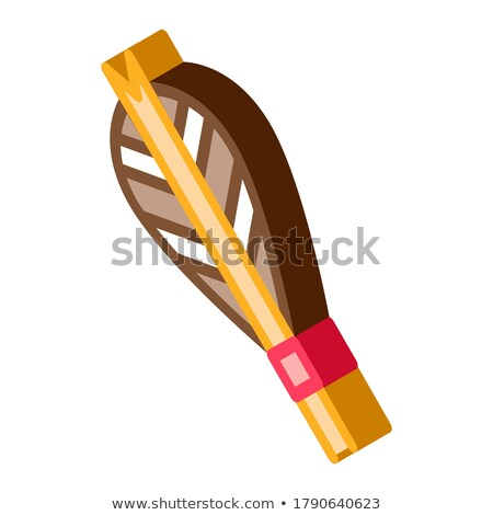 Arrow Feather Plumage Detail isometric icon vector illustration Stock photo © pikepicture