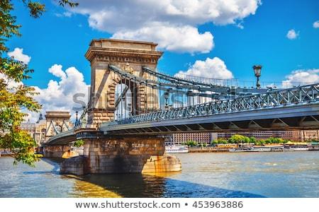 noite · ver · famoso · cadeia · ponte · Budapeste - foto stock © vladacanon