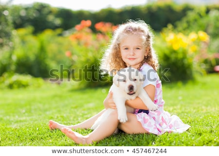 puppy labrador retriever and little girl Stock photo © cynoclub