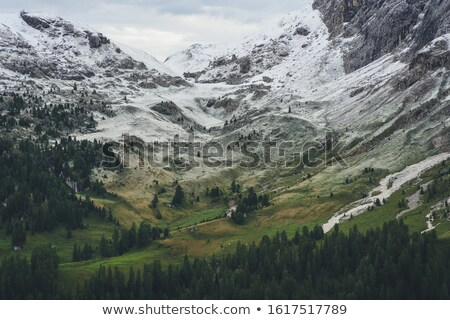 October mountain panorama with first winter snow  Stock photo © wildman