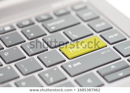 billentyűzet · kulcs · nyereség · üzlet · fekete · siker - stock fotó © 4designersart