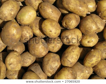Close up of dirty cooking potatoes outside a greengrocers. Stock photo © latent