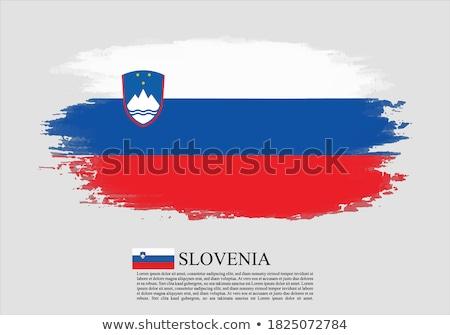 Grunge vlag Slovenië oude vintage grunge textuur Stockfoto © HypnoCreative
