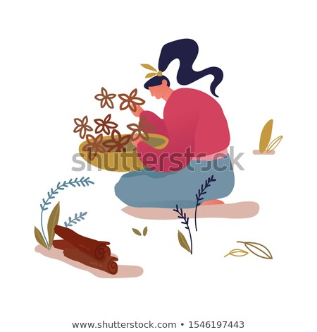 woman collecting wood in the forest stock photo © photography33