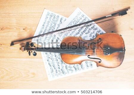 Klasik viyolonsel müzik levha enstrüman konser Stok fotoğraf © KonArt