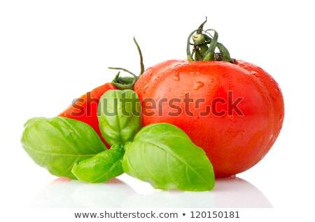 バジル プレート サラダ トマト ランチ 野菜 ストックフォト © M-studio
