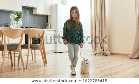 子犬 · 幸せ · ペット · 子 - ストックフォト © photography33