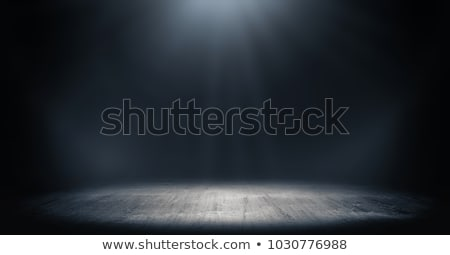 light in the dark stock photo © sirylok